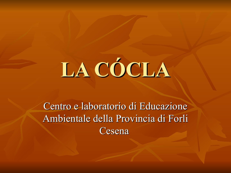 Presentazione-giardino-della-Cocla1