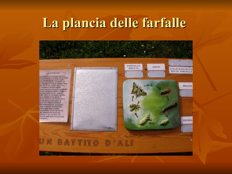 Presentazione-giardino-della-Cocla11