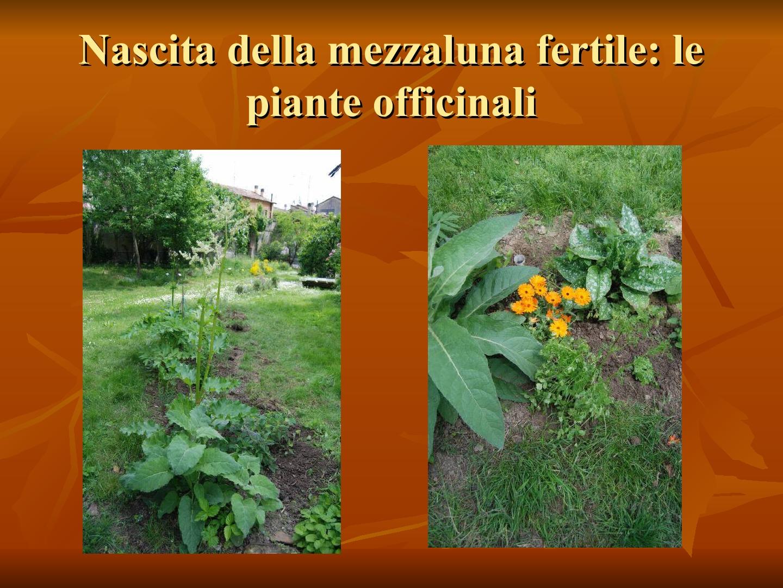 Presentazione-giardino-della-Cocla24