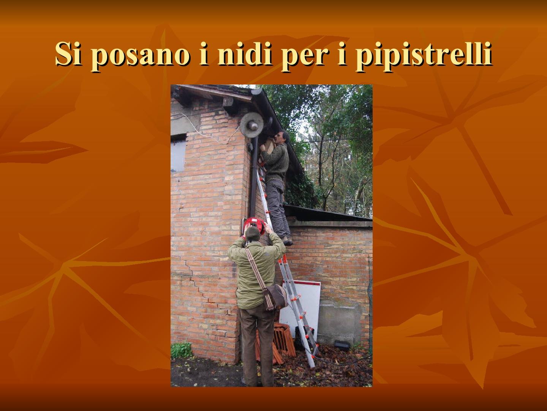 Presentazione-giardino-della-Cocla30