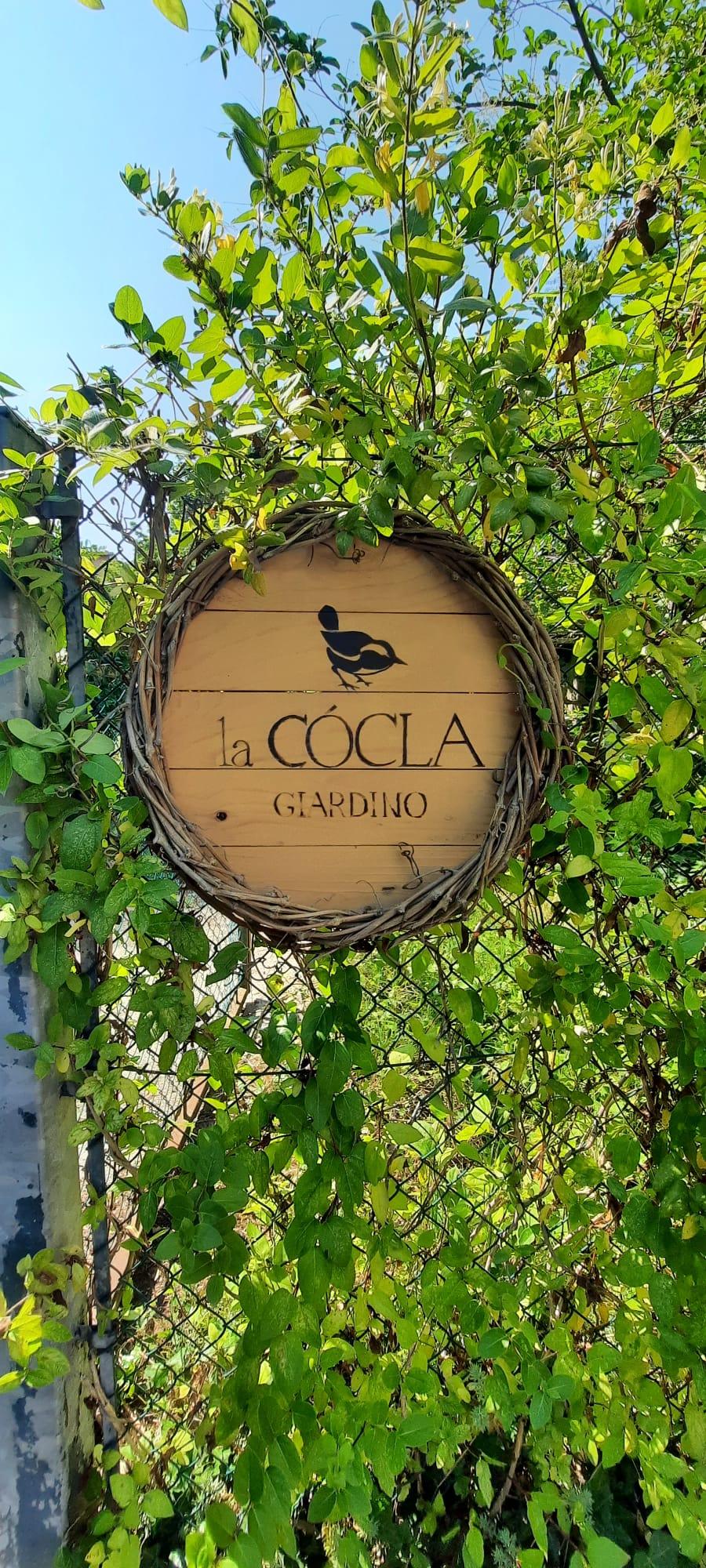 Cocla-13-giu-21-1