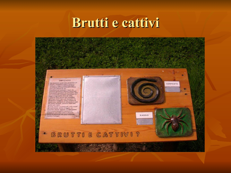 Presentazione-giardino-della-Cocla23