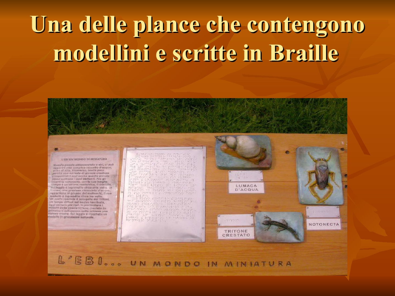 Presentazione-giardino-della-Cocla4