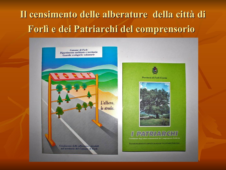 Presentazione-giardino-della-Cocla40